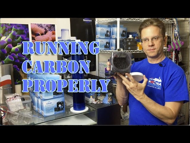 Running Carbon Properly in a reef aquarium