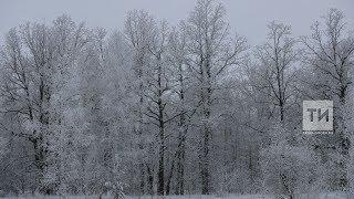 Пресс-конференция о погоде во второй половине зимы в Татарстане