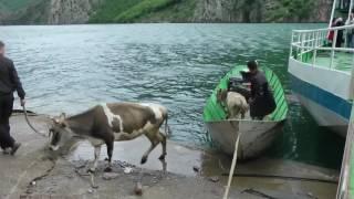 Nejlepší řeky Albánie, ktomu lehká horní Tara. Na kanoi, raftu, kajaku - Video