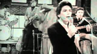 The Outsiders - Time Won´t Let Me  (1966)
