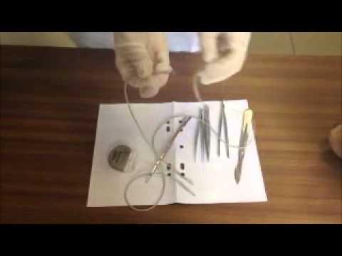 Doigt vidéo massage de la prostate montre