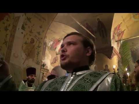 Целеустремленная церковь рик