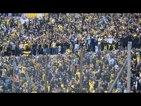 """""""Esta banda loca te vino alentar - Barra Amsterdam"""" Barra: Barra Amsterdam • Club: Peñarol"""