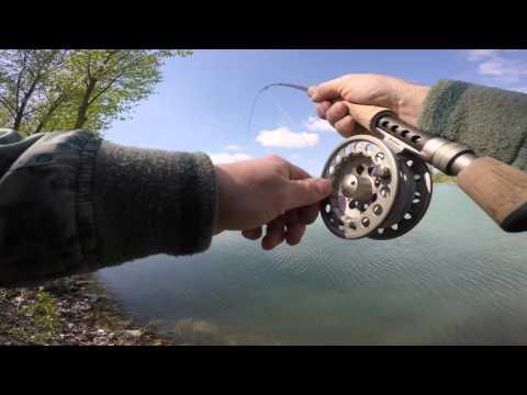 Giocare in pesca per bambini in linea