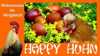 Happy Huhn Folge 30: Hühnereier Im Vergleich   Welche Rasse Legt Welche Eier, Gut Legende Hühner
