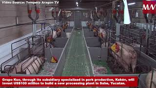 Grupo Kuo will invest US$100 million in a new pork processing plant