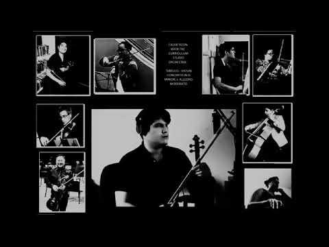 Music Performance Curriculum Virtual Concert (2020)