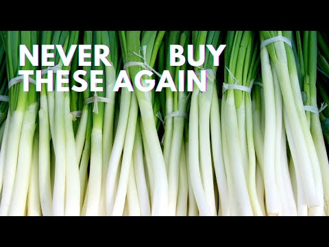 Don't Throw These Foods Away! Regrow Them with Their Cuttings