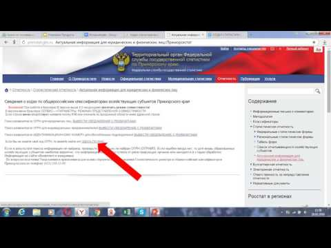 Как узнать коды статистики онлайн для ООО и ИП