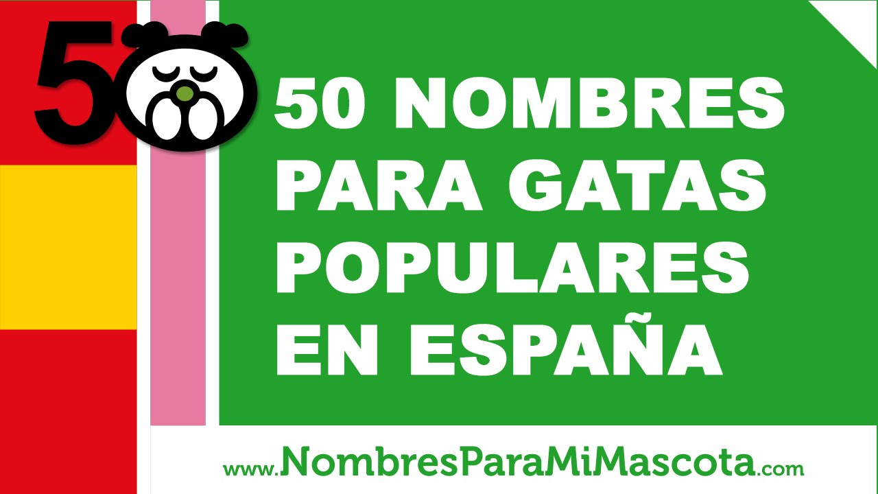 50 nombres para gatas populares en España - www.nombresparamimascota.com