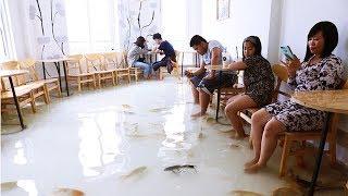 5 Quán Cafe Dị Nhất Việt Nam Khiến Người Nước Ngoài Cũng Phải Học Hỏi