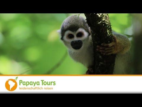 Ecuador & Galapagos Reisen Video Impressionen