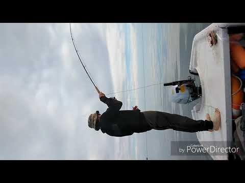 Pesca de palometas de Eddy y Diego Sottile (Parona Signata)