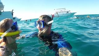 Vlogg | Snorkling I Havet