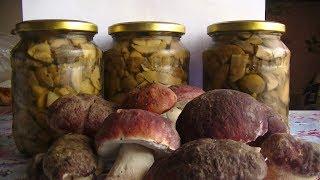 Маринованные грибы на зиму! Универсальный рецепт! Вкусно и просто!