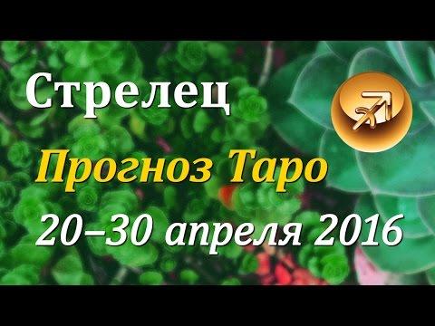 Глоба гороскоп 2016 весы