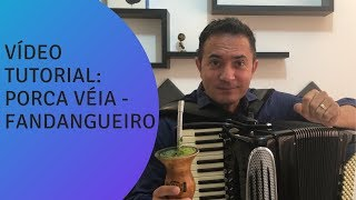 "TUTORIAL DA MÚSICA ""FANDANGUEIRO"" DO PORCA VÉIA"