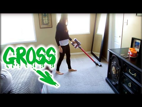 How Gross Are Your Carpets?