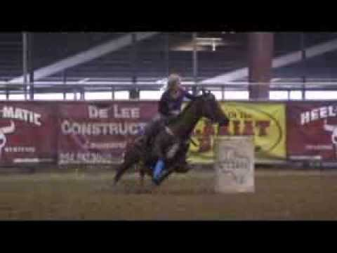 1D Barrel and Pole Horse For Sale - Youth Rodeo Dream Horse