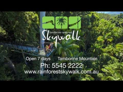 Mt Tamborine Skywalk Show Reel
