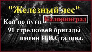 """Коп по войне.""""Железный лес"""".Калининград. 91 стрелковая бригада."""