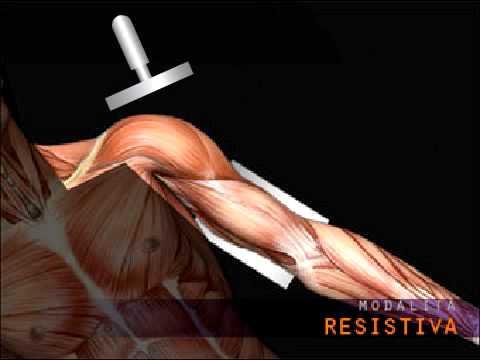 Cerotto Voltaren in osteocondrosi della colonna cervicale