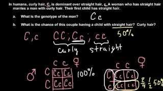 How To Solve Simple Mendelian Genetics Problems