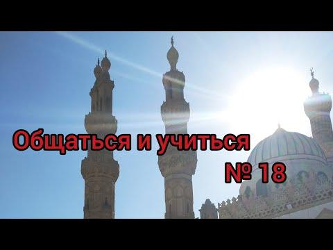 Арабский язык с арабом  || день победы Египта и слова одного учёного || Общаться и учиться № 18