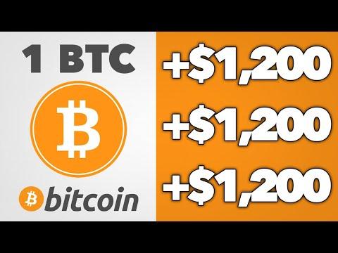 Bitcoin mokymas