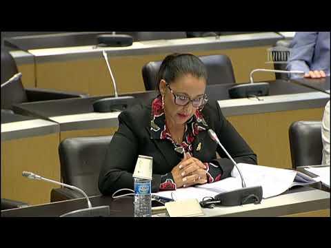 Intervention de Mme KHATTABI sur la Fusion des régions