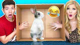 What's In The Box Challenge with My Wife! (Live Animals, Snake, Lizard, Giant Toad)