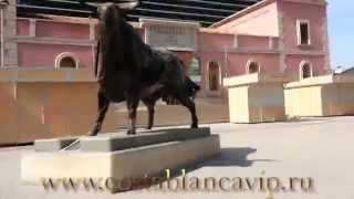 preview picture of video 'Арена для боя быков и парк Рибальта в Кастельоне. Castellon de la Plana CostablancaVIP'
