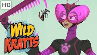 Wild Kratts 💪 Activate Tough Insect Powers! | Kids Videos