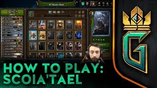 GWENT: The Witcher Card Game   How to Play: Scoia