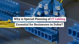 Why is Special Planning of IT Cabling Essential for Businesses in Dubai