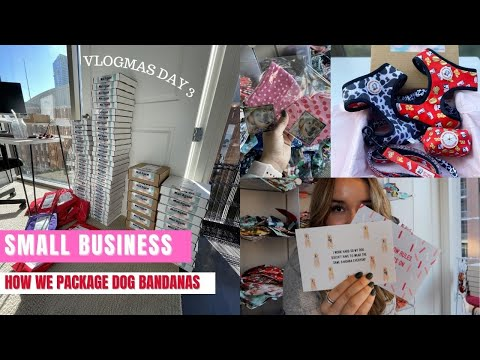 , title : 'Vlogmas Day 3: How We Package & Ship our Dog Bandanas