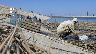Як живе анексований півострів без дніпровської води