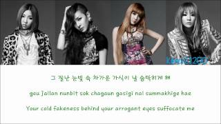 2NE1 - Ugly [Hangul/Romanization/English] Color & Picture Coded HD