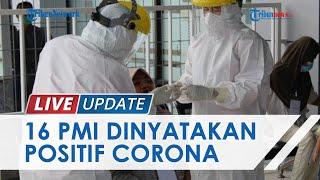 16 Pekerja Migran Asal Malaysia di Nunukan Positif Covid-19 seusai Dites PCR, Begini Nasibnya