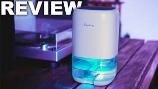 Best $50 Small Dehumidifier on AMAZON
