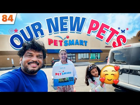 , title : 'New PETS for Junnu & Honey    USA    VAAS Vlogs    Telugu Vlogs from USA