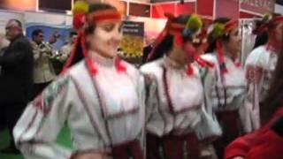 セルビア民族ダンス①