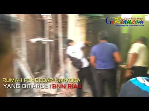 Video Detik-detik Penggerebekan BNN Riau di Kampung Dalam, Ditemukan Lorong Rahasia dan Bunker