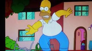 Homer Simpson Geschrei --- Homer Simpson crazy crying
