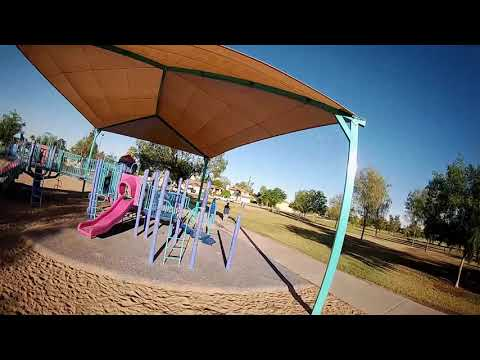 Gofly Scorpion 85HD Brushless Whoop - FPV Park Around Trees and Playground