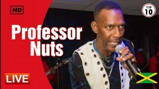 PROFESSOR NUTS live 2018, inna di bus   bad boy jimmy & more (AUDIO)