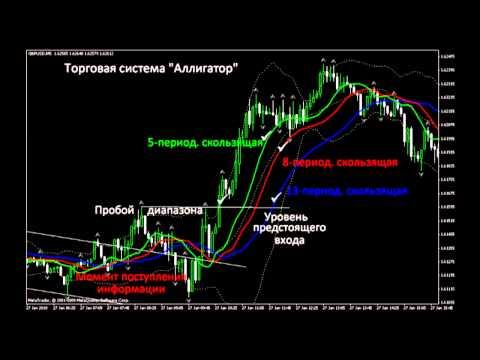 Как выглядят сигналы бинарных опционов