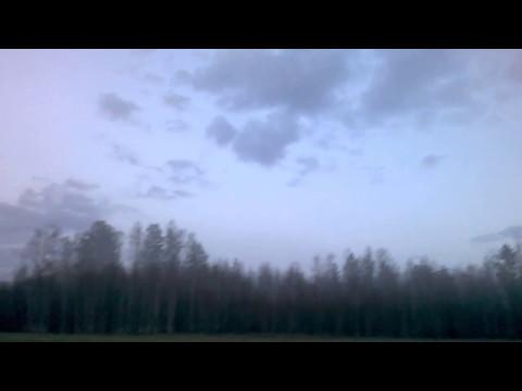 Sibirienwolf Abendstimmung in Sibirien