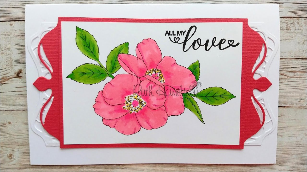 Colouring Wild Roses