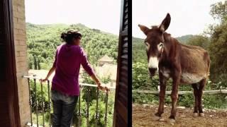 Video del alojamiento La Rovira